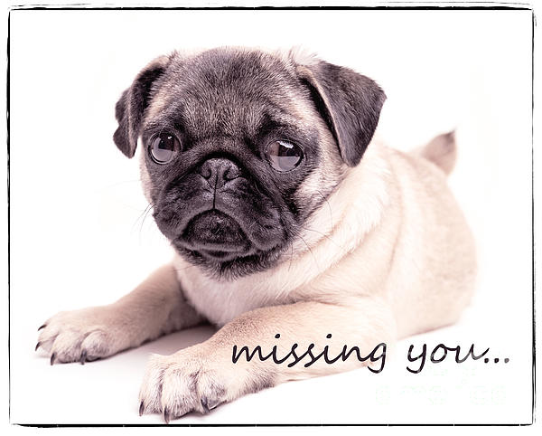 Missing You... Print by Edward Fielding