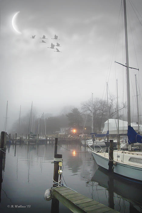 Misty Harbor Lights Print by Brian Wallace