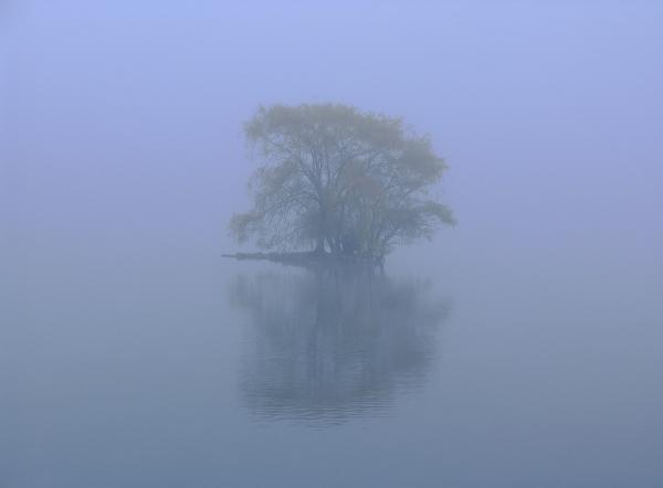 Misty Morning At Jamaica Pond Print by Juergen Roth