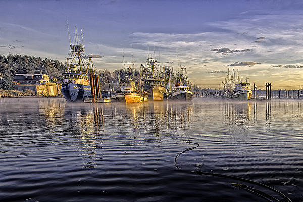Misty Morning At The Docks Print by Evan Spellman