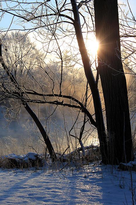 Misty River Sunrise Print by Hanne Lore Koehler