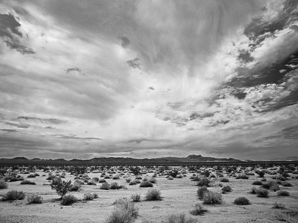 Mojave National Preserve Print by Mike Herdering