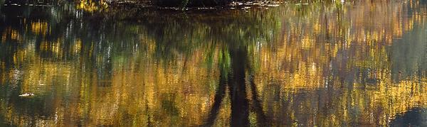 Monet At The Biltmore Print by Anita Adams