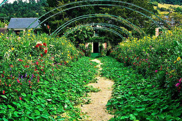 Monet's Gardens At Giverny Print by Jeff Black