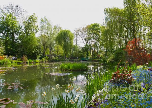 Monet's Water Garden At Giverny Print by Alex Cassels