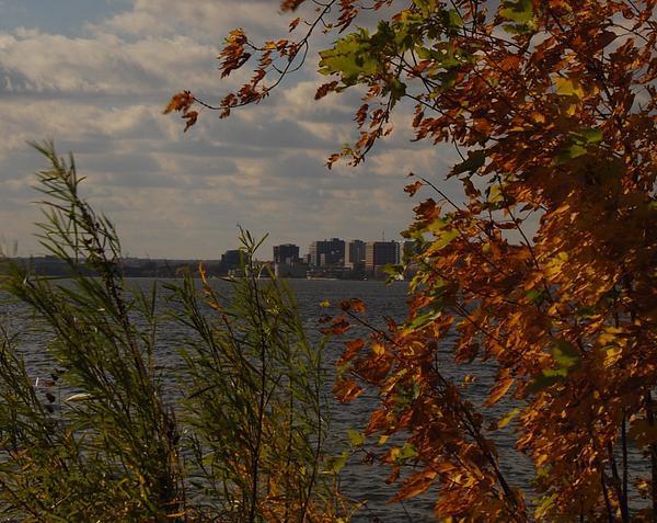 Ramona Whiteaker - Monona Terrace In The Fall