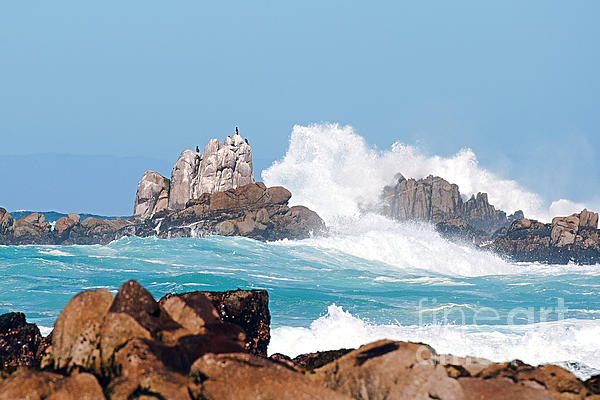 Monterey Bay Waves Print by Artist and Photographer Laura Wrede
