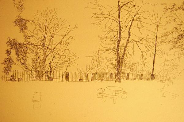 Montlake's Terrace In Winter Print by Herschel Pollard