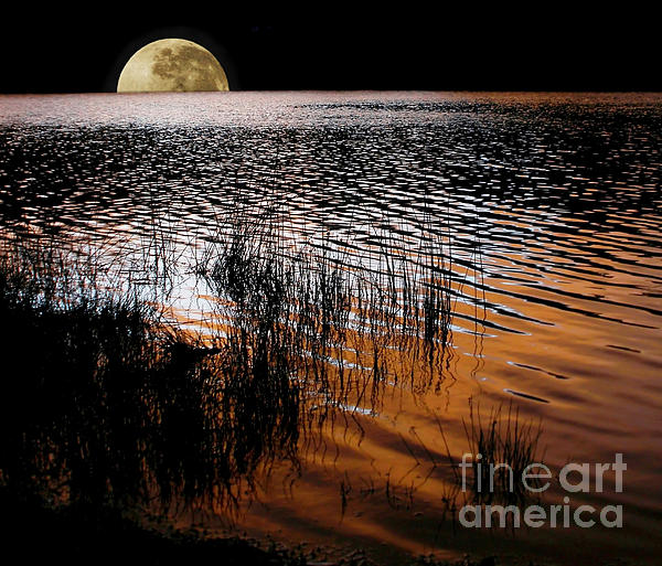 Moon Catching A Glimpse Of Sunset Print by Kaye Menner