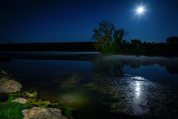 Moon Over Lake Print by Alexey Stiop