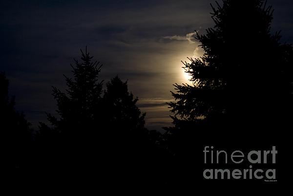 Moon Rising 02 Print by Thomas Woolworth