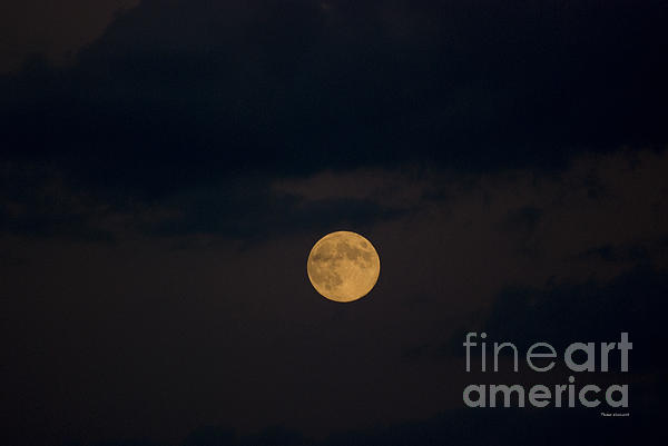 Moon Rising 07 Print by Thomas Woolworth