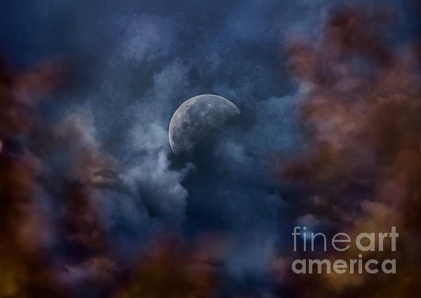 Moon Shine Print by Andrea Kollo