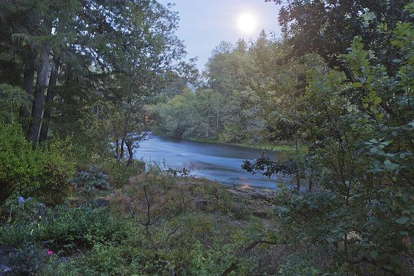 Moonlit River Print by Belinda Greb