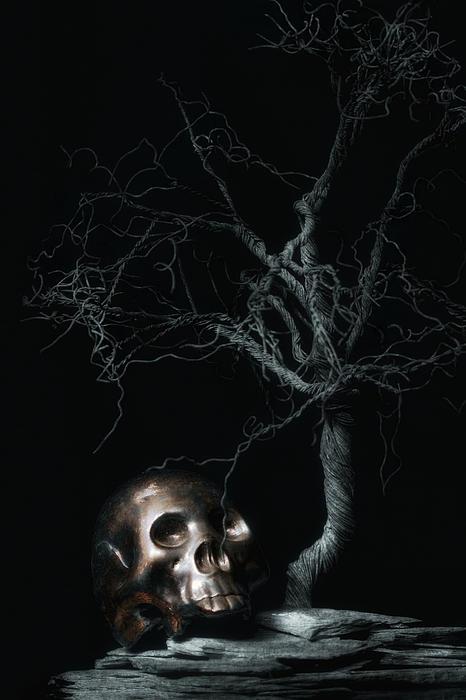 Moonlit Skull And Tree Still Life Print by Tom Mc Nemar