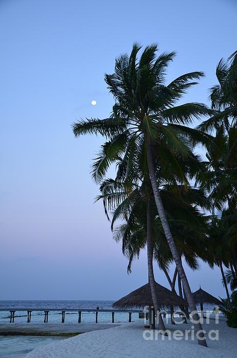 Moonrise In Maldives Print by Corinne Rhode