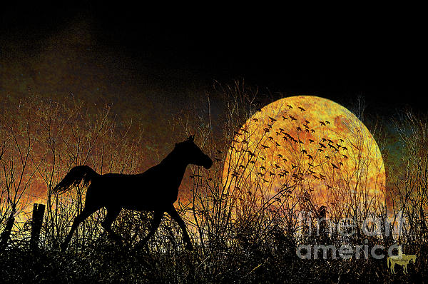 Moonrise Trot Print by Karen Slagle