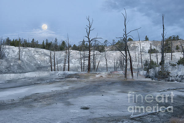 Sandra Bronstein - Moonset At Mammoth Terrace-Yellowstone