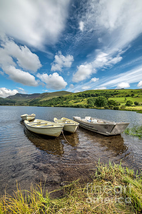 Moored Boats  Print by Adrian Evans