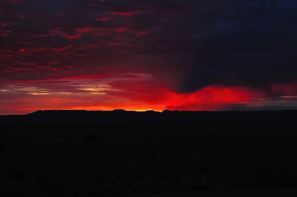 Morning Blaze Print by Gene Sherrill