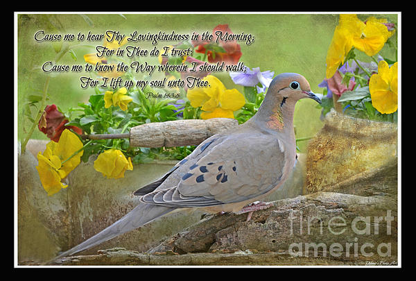 Morning Dove With Verse Print by Debbie Portwood