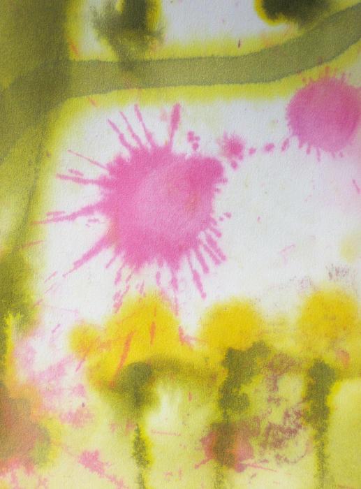 Morning Has Broken Print by Malinda Kopec