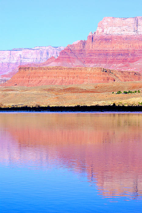 Morning Light - Vermillion Cliffs And Colorado River Print by Douglas Taylor