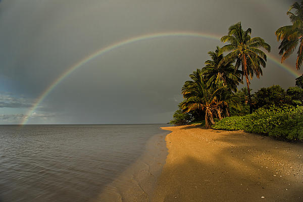 Alan Kepler - Morning on Molokai