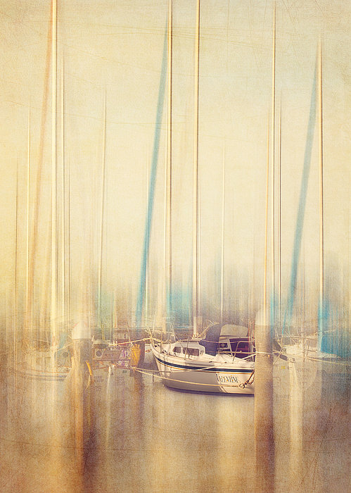 Morning Sail Print by Amy Weiss
