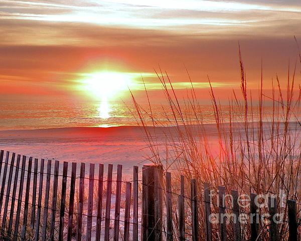 Morning Sandfire Print by Kim Bemis