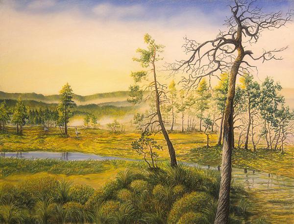 Morning Swamp Print by Veikko Suikkanen