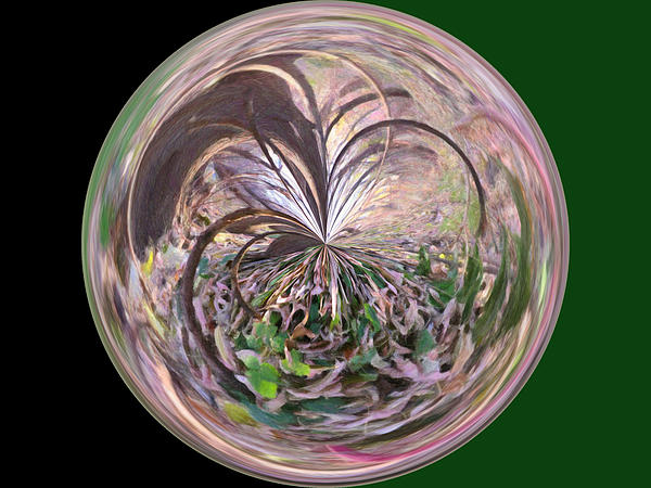 Morphed Art Globe 36 Print by Rhonda Barrett