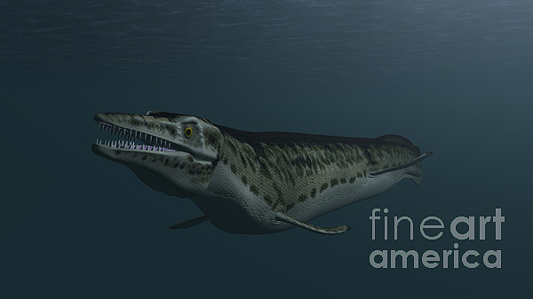 Mosasaur Swimming In Prehistoric Waters Print by Kostyantyn Ivanyshen