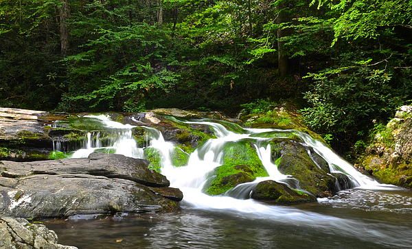 Mossy Mountain Falls Print by Frozen in Time Fine Art Photography