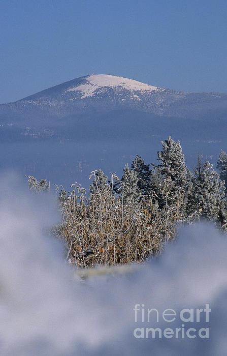 Mount Spokane Print by Sharon Elliott