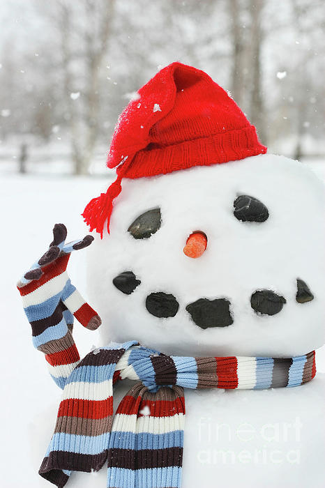 Mr. Snowman Print by Sandra Cunningham