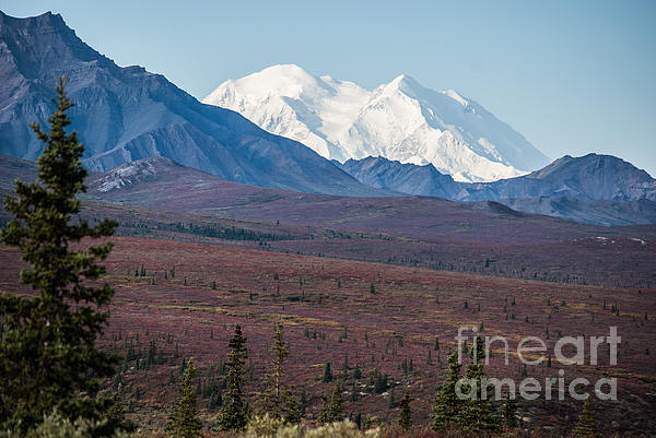 Jim Cook - Mt McKinley