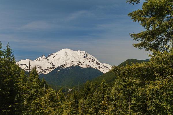 Mt Rainier Print by Brian Harig