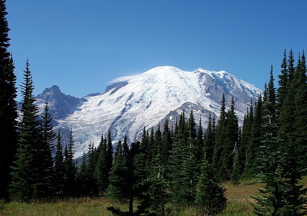 Mt. Rainier In August Print by Chalet Roome-Rigdon
