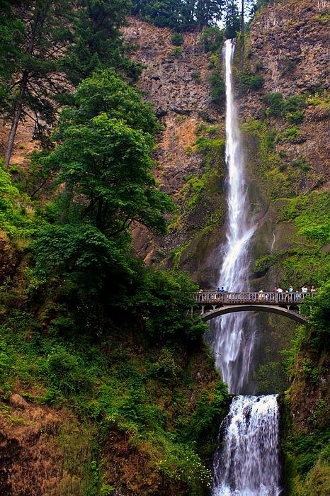 Alexander Ferguson - Multnomah Falls
