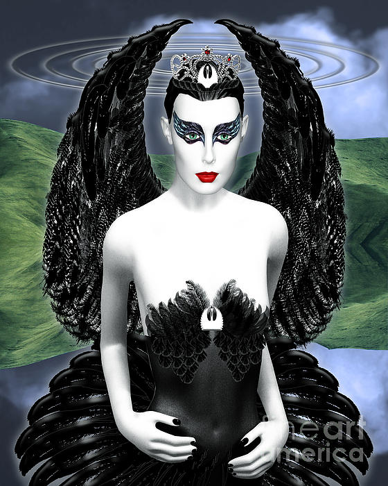 My Black Swan Print by Keith Dillon