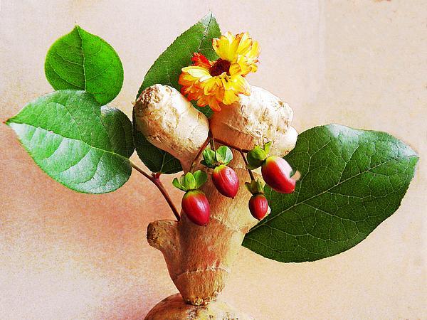 My Little Ginger Tree 2 Print by Sarah Loft