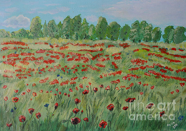Felicia Tica - My poppies field