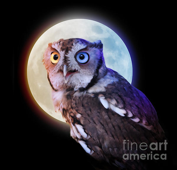 Mysterious Owl Animal At Night With Full Moon Print by Angela Waye