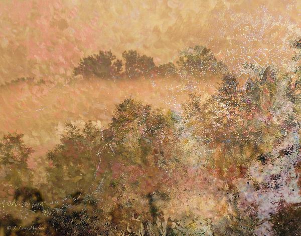 Mystery Swamp Sunrise Print by J Larry Walker