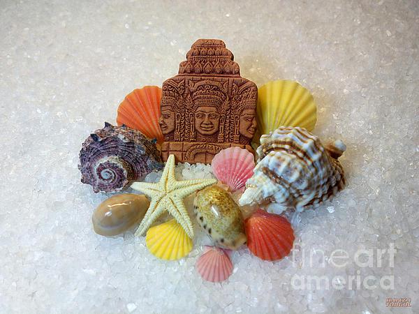 Mystic Energy Seashells And Starfish Print by Hanza Turgul