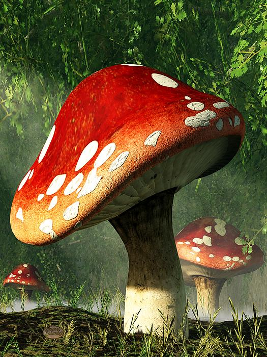 Mystic Mushroom Print by Daniel Eskridge