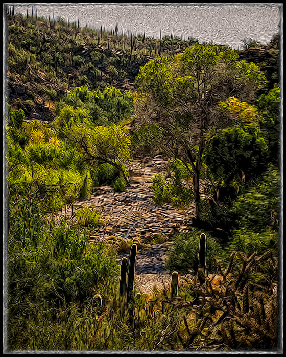 Mystic Wandering Print by Mark Myhaver