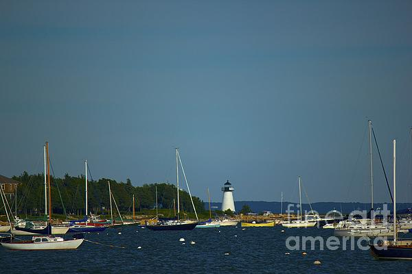 Ned's Point In Mattapoisett Print by Amazing Jules