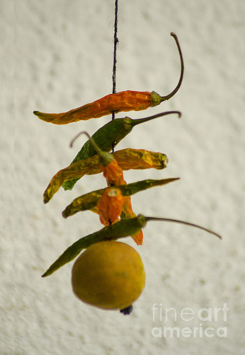 Neembu Mirch  Lemon N Chillies Print by Vineesh Edakkara